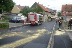 1_lspur-in-gerbrunn-am-17-07-2012-2