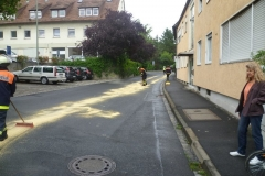 1_lspur-in-gerbrunn-am-17-07-2012-4