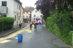 lspur-in-gerbrunn-am-17-07-2012-11